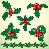 Christmas Holly twigs- set of decorative elements