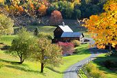 Old barn in  Vermont rural side surrounded by fall foliage poster