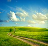 stock photo of dirt road  - Summer landscape with green grass - JPG
