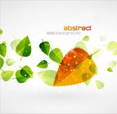 Nature vector design with orange colors