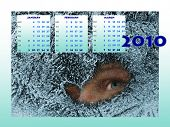 Calendar 2010: January, February, March, with icy photoillustration