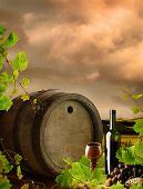 Red wine with old wine barrel on background of vineyard landscape with dramatic evening sky