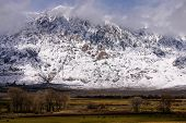 Eastern Sierra Mountains and Meadows