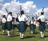 Bagpipes 4991