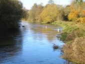The River Itchen Winchester Uk Ii