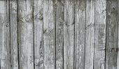 Horizontal Rustic Weathered Old Painted Wood Background With Knots And Nail Holes. Woods Texture. poster