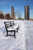 Empty Snowy Bench In Chicago