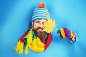 Smiling Bearded Man With Autumnal Maple Yellow Leaf In Hand. Bearded Man In Colorful Hat Look Throug poster