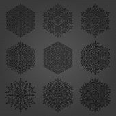 Set Of Vector Snowflakes. Fine Winter Black Ornaments. Snowflakes Collection. Snowflakes For Backgro poster