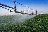 Pivoting Irrigation System