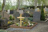 Graveyard In The Vulkan Eifel