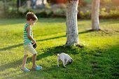 boy and pug