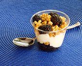 Blackberry, granola and vanilla yogurt parfait