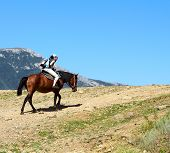 Girl On A Horse In The Mountains