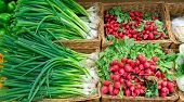 picture of scallion  - Scallions and radish at a market stall - JPG