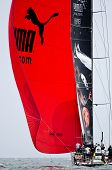 Puma Under Spinnaker.  (volvo Ocean Race 2011-2012)