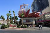 Las Vegas - Flamingo Hotel And Casino