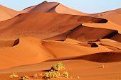 Sand Dunes Of Namibia