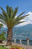 Promenade of Menaggio,Lake Como,Italy