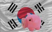 Piggy Rich Bank And  National Flag Of South Korea