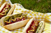 Grilled hot dogs with mustard, ketchup and relish