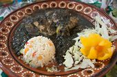 pic of poblano  - A typical mexican dish of chicken with mold - JPG