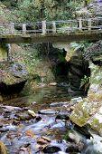Bridge Over River Crossing
