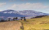 Cheviot Hills, Northumbria, Uk