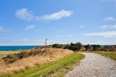 Path to Waipapa Point Lighthouse The Catlins of NZ