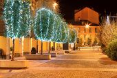 Row of trees illuminated for Christmas holidays on cobbled street at night in Alba, Northern Italy.