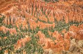 Bryce Canyon Amphitheater Valley