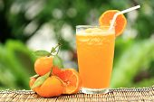 Group Of Orange And Orange Smoothie