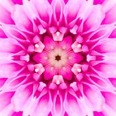 stock photo of kaleidoscope  - Pink Concentric Flower Center Macro Close - JPG