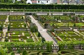 Kitchen garden in Chateau de Villandry. Loire Valley France