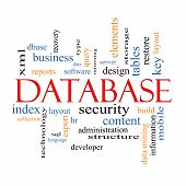 image of query  - Database Word Cloud Concept with great terms such as security server software design and more - JPG