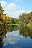 Autumn day in the park. Forest landscape of the lake.