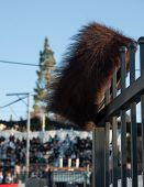 picture of rabbi  - A traditional orthodox Jewish Shtreimel hat set on the fence during sunrise  - JPG