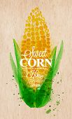 Corn watercolor poster