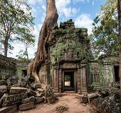 Angkor Wat Cambodia. Ta Prom Khmer ancient Buddhist temple in jungle forest. Famous landmark, place of worship and popular tourist travel destination in Asia.