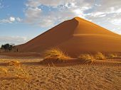 African sand dune