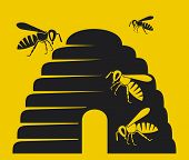 bees and beehive icon