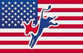 American flag with the democratic party's donkey on it