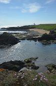 Elie Coast