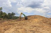 BORNEO, MALAYSIA - MAY 03 2014: Deforestation. Photo of tropical rainforest in Borneo being destroye
