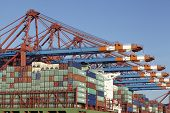 Hamburg - Container Gantry Cranes Loading And Unloading