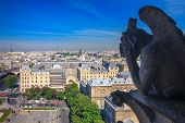 Chimere Looking Toward The Eiffel Tower And The District Of La Defense At Notre Dame In Paris