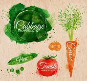 Vegetables watercolor cabbage, carrot, tomato, peas kraft