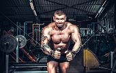 picture of muscle builder  - Body Builder Working Out At Gym  - JPG