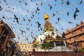Wisdom eyes Nepal