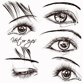 Collection Of  Beautiful Vector Hand Drawn Female Eyes For Design